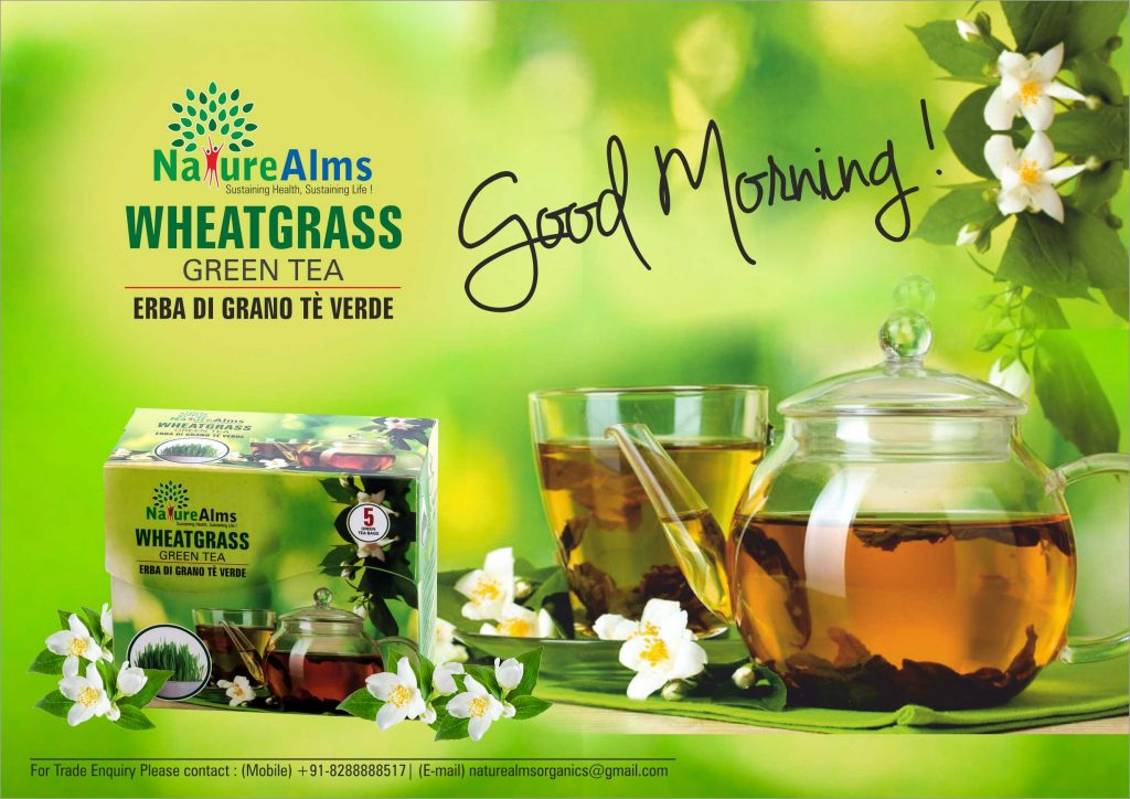 Benefits Of Wheat Grass Green Tea Loose Weight And Enhance Immunity